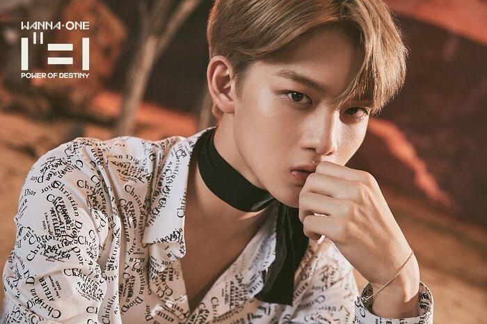 Thông tin, tiểu sử Wanna One Profile: thành viên Jinyoung